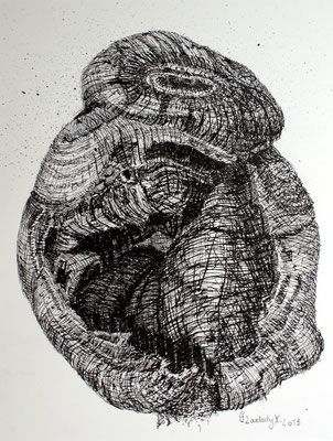 Mikrokosmos - Zyklop, Microcosm - Cyclops / Tusche, Indian ink / 23 x 30 cm / 2013