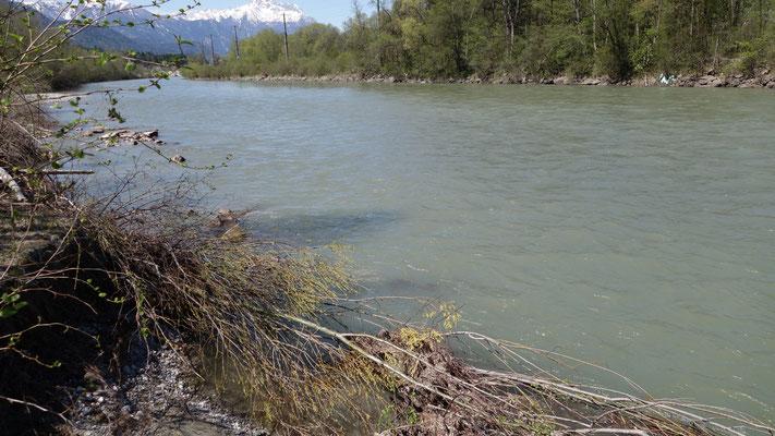 ...weil sie für den extrem schnellen Fluß wie ein Prallufer wirkte.