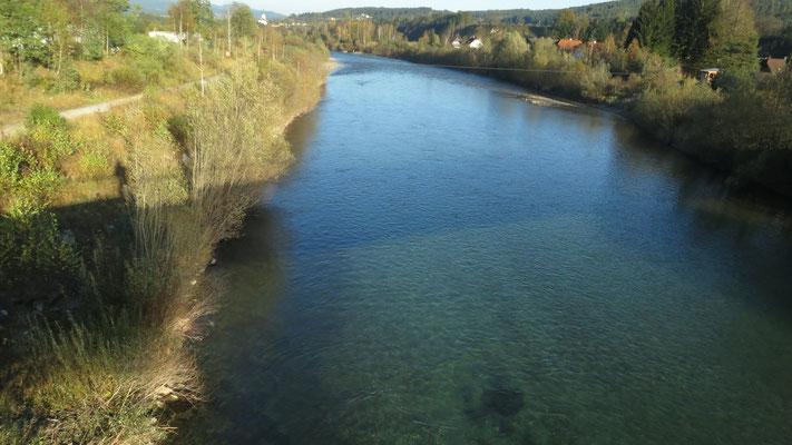 Blick von der Tschinowitscher-Brücke Richtung flussabwärts