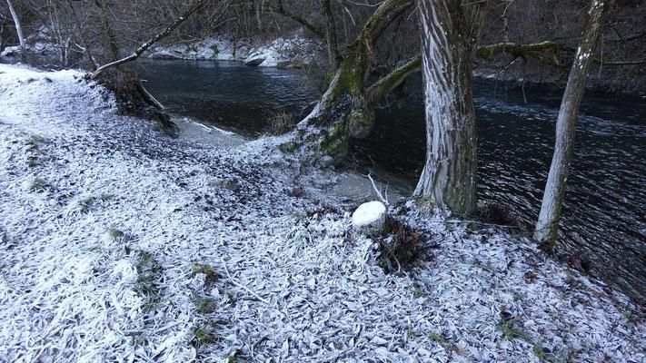 Im Winter ist das Wasser naturgemäß äußerst klar