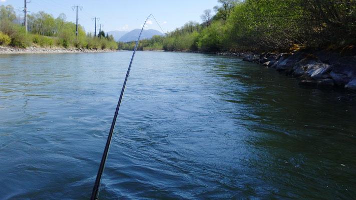 Die Steinblöcke am Ufer sind bei der Fischerei auf Bachforellen ein ganz heißer Tipp