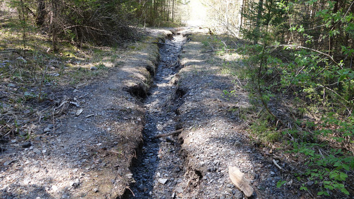 Das äußerst starke Regenwasser hat sich im Weg ein Bachbett gegraben.