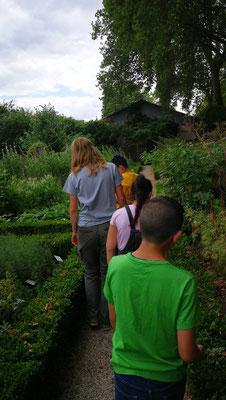 Voyage dans les allées du Jardin des Plantes