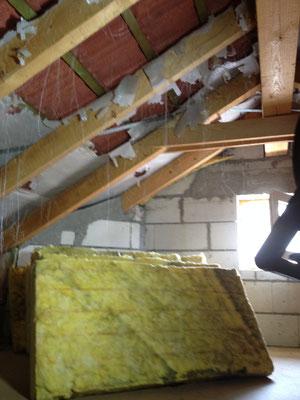 Bild 4 von 5 Marder im Haus | Schäden und gestörte Nachtruhe vermeiden mit dem Marder- & Waschbären-Stopp