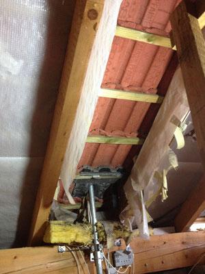 Bild 2 von 5 Marder im Haus | Schäden und gestörte Nachtruhe vermeiden mit dem Marder- & Waschbären-Stopp