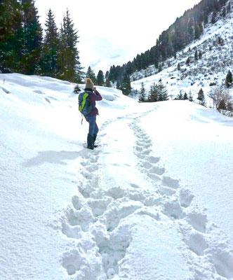 Nationalpark Hohetauern, Schneeschuhwandern
