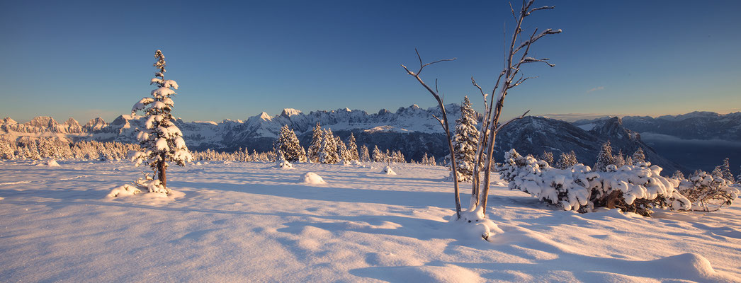 Erster Schnee im Morgenlicht, Alp Tamons, 08.Nov.2016