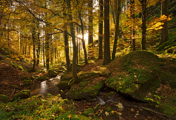 Herbst, Heidiland