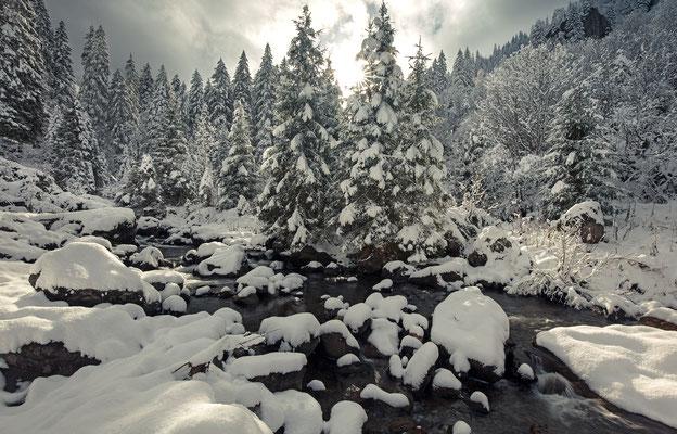 Wintereinbruch im Murgtal, 07.Nov.2016