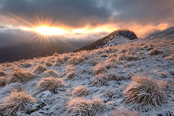 Nach kurzem Schneegestöber...  Palfries, 29.Nov.2016