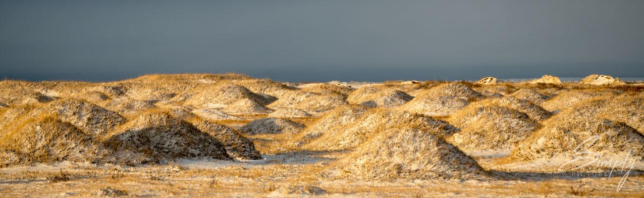 Beschneites Lavafeld zwischen der Ringstrasse und dem Strand Landeyjahöfn.