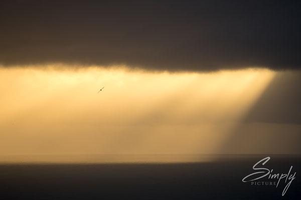Goldige Abendstimmung mit dunklen Wolken bei dem Dyrhólaey Leuchtturm.