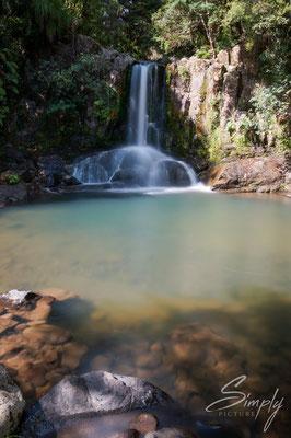 Waikat, Waiau Fall, Wasserfall im Wald, Langzeitaufnahme