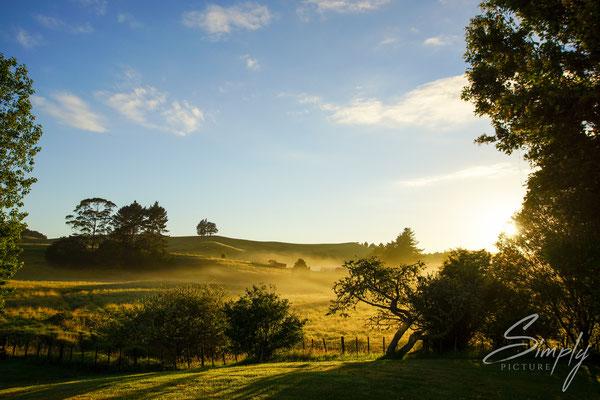 Kahoe, Kahoe Farms Hostel BBH, Gold-gelber Sonnenaufgang im Grasland