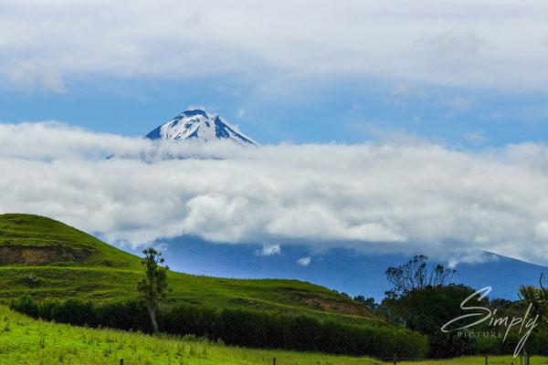 Egmont National Park, Mount Taranaki, Vulkanbergspitze teilweise in den Wolken, saftig grüne Wiesen im Vordergrund