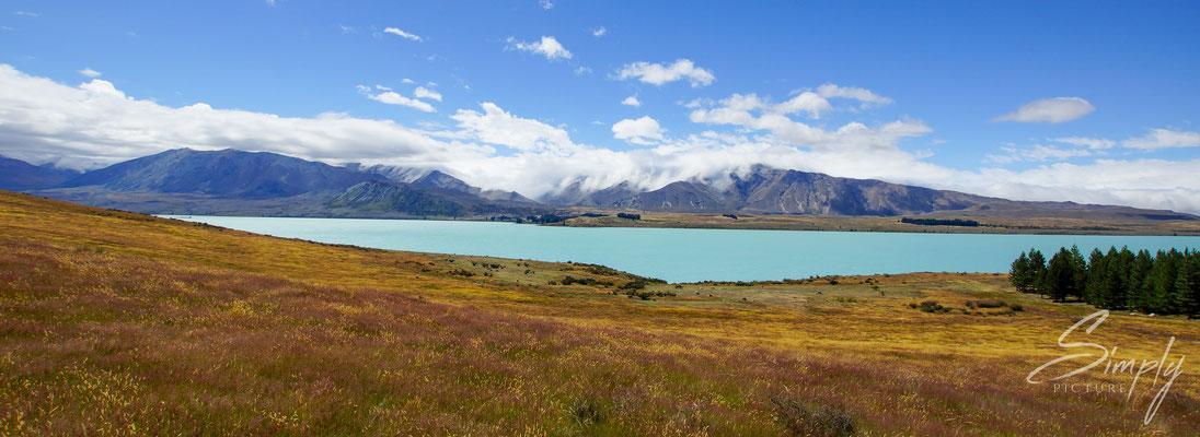 Lake Tekapo, Blick auf den hellblauen See mit Gletscherwasser