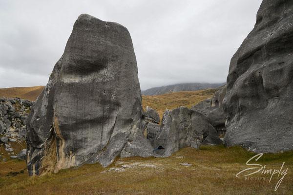 Kura Tawhiti, Castle Hill Conservation Area