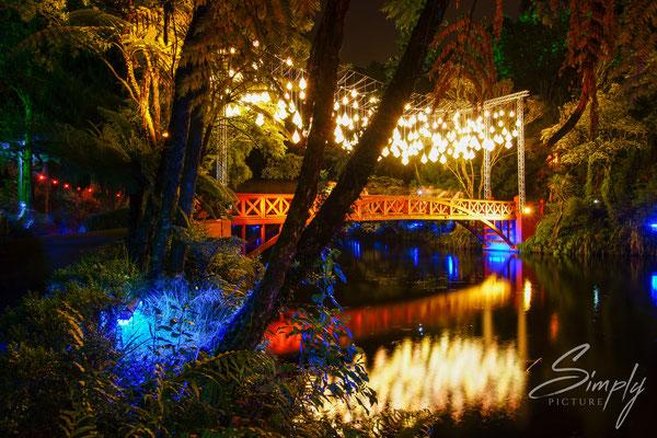 New Plymouth, Pukekura Park, Lichterfest, rote Brücke mit kreativer Beleuchtung und Spiegelung im Wasser