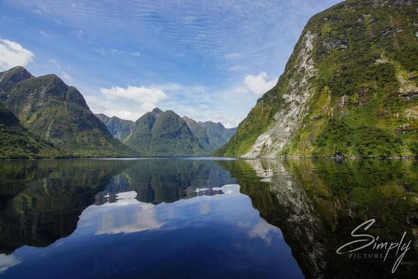 Manapouri, Doubtful Sound, Spiegelung im flachen Meerwasser der unberührten Felsen mit subtrobischen Urwald