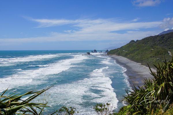 Muriwai Gannet Colony, Aussicht von der Gannet Colony auf einen der beliebten Surfstrände in Neuseeland