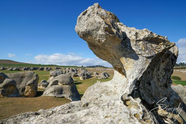 Kura Tawhiti, Castle Hill Conservation Area, Drachenprofiel aus Stein