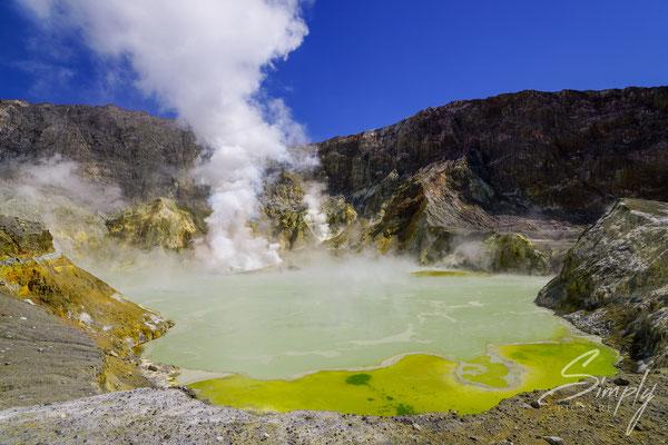 Whakaari, White Island, gelber, heisser Schwefelsee mit viel Dampf
