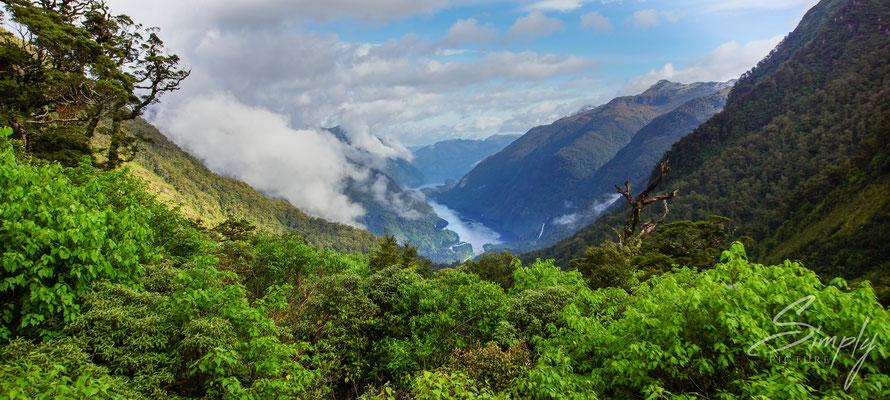 Manapouri, Doubtful Sound, Sicht auf den Sound bei der Fahrt im Fiordland National