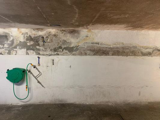 Bautenschutz