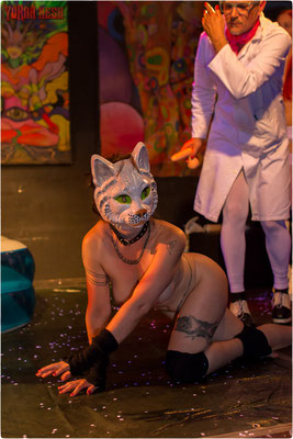 Opium-Excessive-Theatre: ANIMAL FARM    Fotos: YORAN NESH