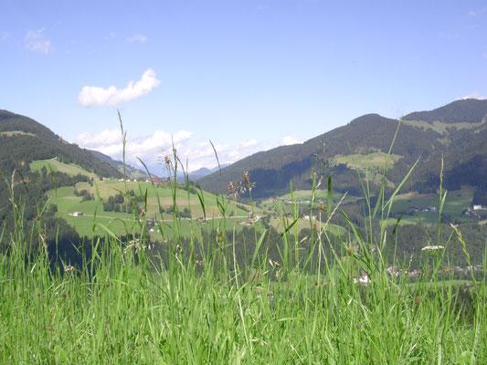 Ausblick vom Schürzberghof Richtung Wilder Kaiser