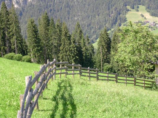 Der Zaun passt gut in die Landschaft