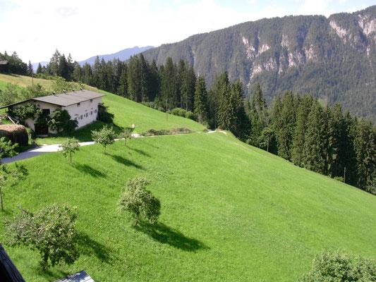 Herrlich, das frische Grün am Schürzberghof!