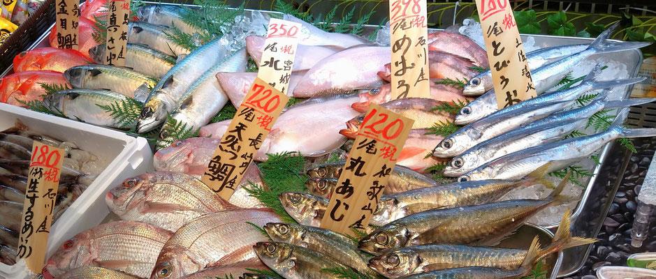 ~  飛び魚に・・・ ~ 心躍る 夏の海♪  (2020.6.7) (c) Yukie Arai