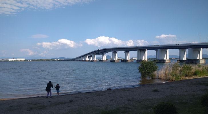 ~  はいっチーズ!  ~  初夏のよそおい  琵琶湖大橋♪    (2021.6.1) (c) Yukie Arai