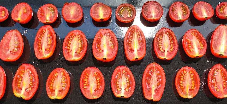 ~  天日干し  ~  猛暑よ!! かかってこい  ドライトマト作り♪   (2021.8.2) (c) Yukie Arai