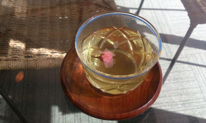 ~  Tea break ♪  ~ サ・ク・ラ・サ・ク  お*も*て*な*し (2018.3.14) (c) Yukie Arai