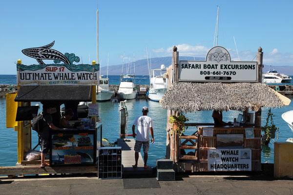 Lahaina Harbour