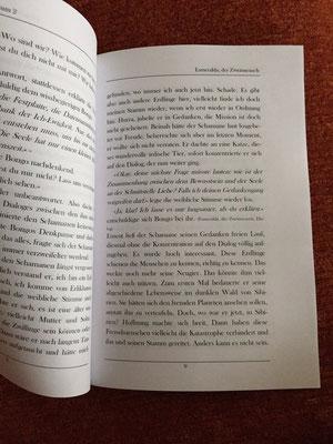 Karin Mettke-Schröder/Die Legende der Erdlinge 2/Seite 9