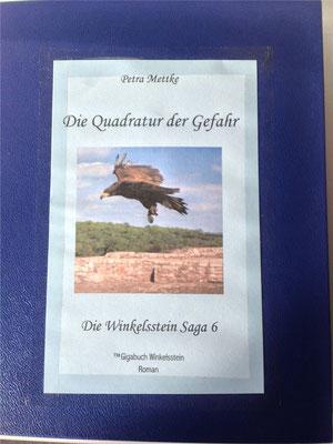 Petra Mettke/Gigabuch Winkelsstein 06/Die Quadratur der Gefahr/Druckskript 2012/Ordner