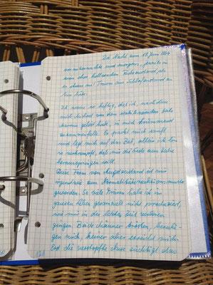 Petra Mettke/Gigabuch Michael 05/Originalordner/1994/Notat 237 auf Seite 131
