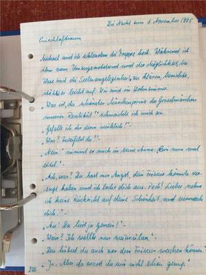 Petra Mettke/Gigabuch Michael 12/Originalordner/1995/ Seite 935