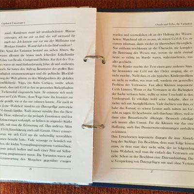 Karin Mettke-Schröder und Petra Mettke/Das Diary aus Oxada und Eybo, die Varianten ™Gigabuch Universum Band 1/ 2016/Seite 26-27