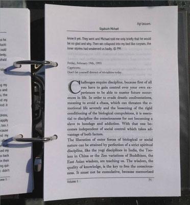 Petra Mettke, Karin Mettke-Schröder/Gigabuch Michael Volume 1/Druckskript/2011/Seite 71