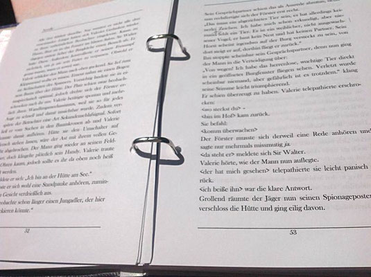Petra Mettke/Gigabuch Winkelsstein 01/Die Dialektik der Erbfolge/Druckskript 2010/Seite 53