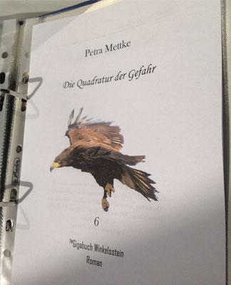 Petra Mettke/Gigabuch Winkelsstein 06/Die Quadratur der Gefahr/Druckskript 2012/Titelblatt