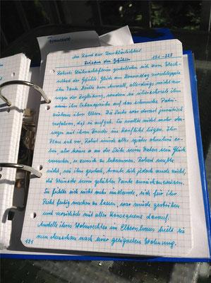 Petra Mettke/Gigabuch Winkelsstein 05/Original 2011/8. Kapitel: Zwischen den Gefühlen