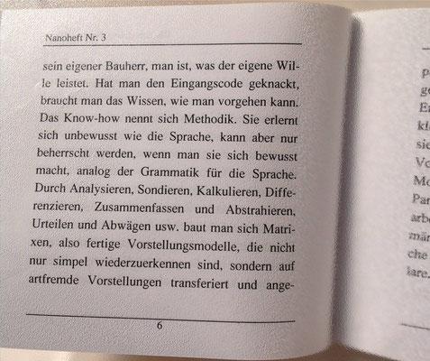 Karin Mettke-Schröder/Schichtung der Intelligenz/Thesen zum Gigabuch Michael/Nanobook Nr. 3/2004/Seite 6