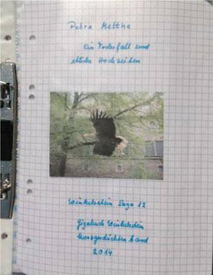 Petra Mettke/Gigabuch Winkelsstein 12/Original 2014/Titelblatt