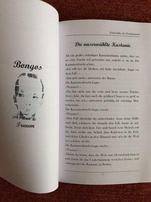 Karin Mettke-Schröder/Die auserwählte Kastanie/™Gigabuch Universum Band 2/Seite 3