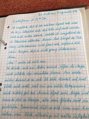 Petra Mettke/Gigabuch Michael 15/Originalordner/1996/ Seite 551